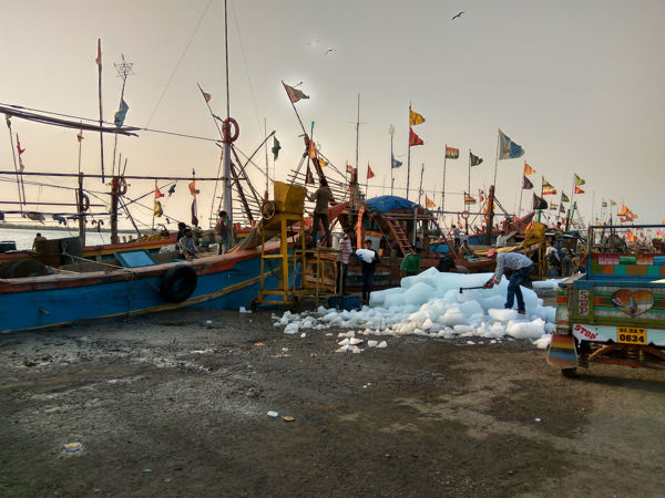Boats Being Prepared For Fishing At Diu